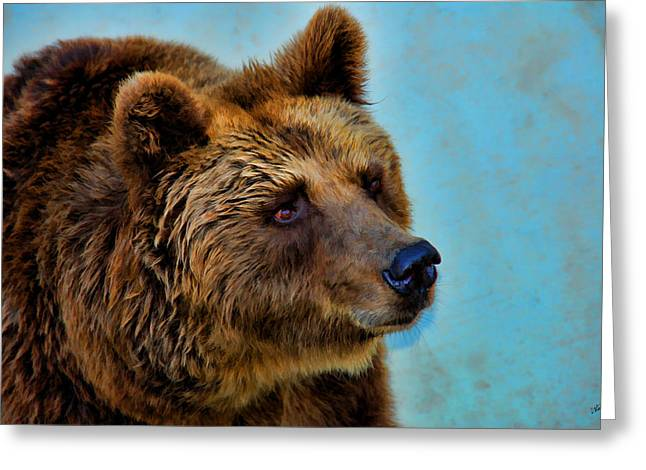 Brown Bear 203 Greeting Card