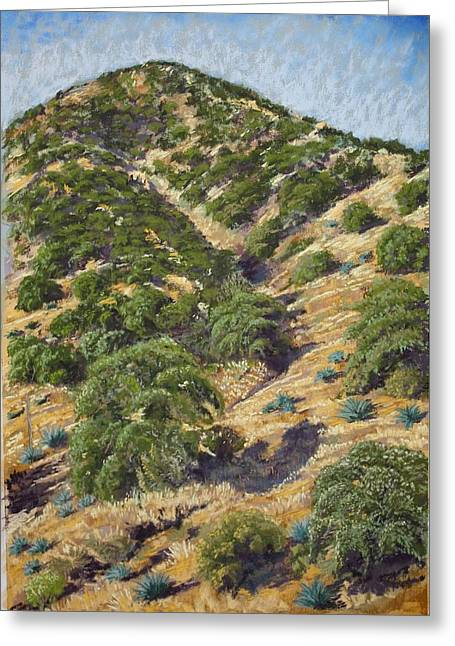 Brown Canyon Greeting Card by Drusilla Montemayor