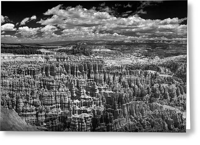 Bryce Canyon - Black And White Greeting Card by Larry Carr