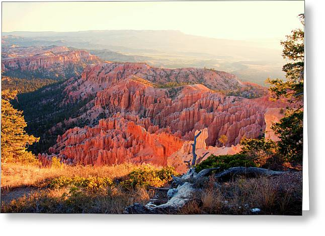 Bryce Canyon At Sunrise Greeting Card by James Bethanis