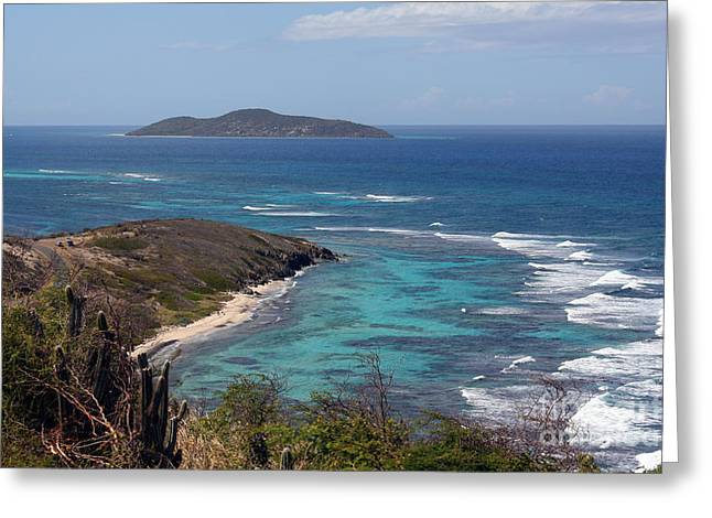 Buck Island Usvi Greeting Card
