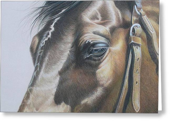 Buckles And Belts In Colored Pencil Greeting Card by Carrie L Lewis