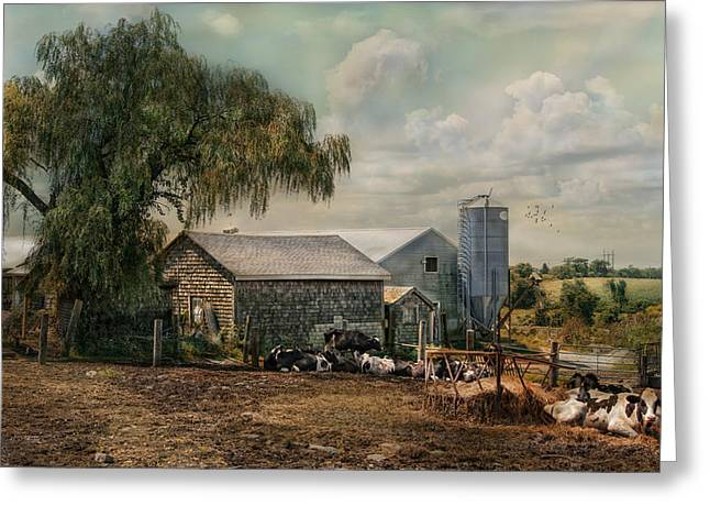 Greeting Card featuring the photograph Bucolic Bliss by Robin-Lee Vieira