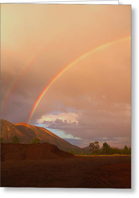 Greeting Card featuring the photograph Buffalo Rainbow by Tom Kelly