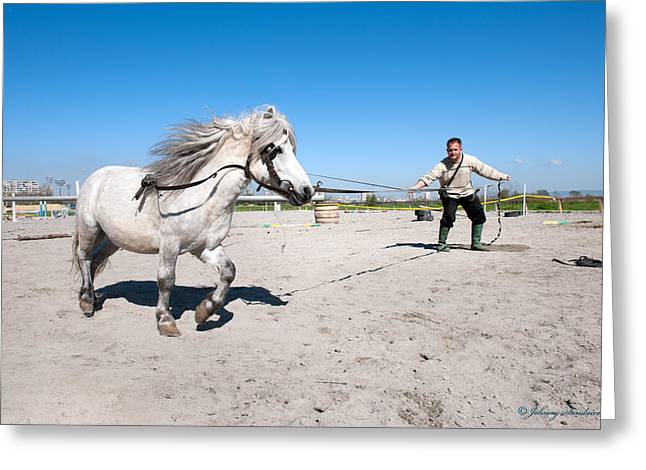 Bulgaria Horse Greeting Card