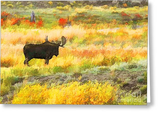 Bull Moose Greeting Card by Clare VanderVeen