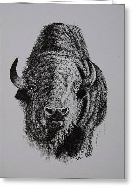 Bull Greeting Card by W Wayne Mosbarger
