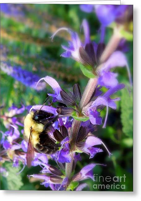 Bumble Bee On Flower Greeting Card by Renee Trenholm