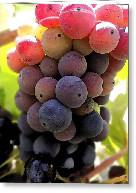 Greeting Card featuring the digital art Bunch Of Ripening Grapes by Anne Mott