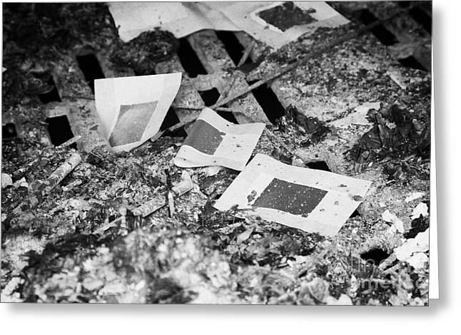 Burnt Remains Of Joss Paper Offerings In The Furnace In A  Monastery Sha Tin New Territories Greeting Card by Joe Fox