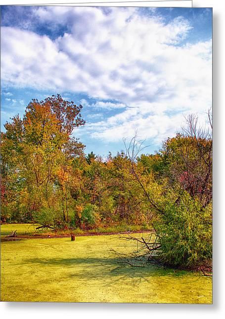 Busch Wildlife Swampy Autumn - 2 Greeting Card by Bill Tiepelman