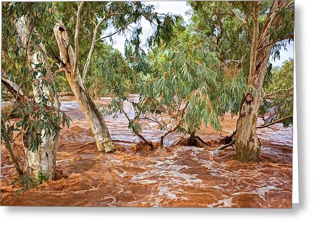 Bush Flood Greeting Card