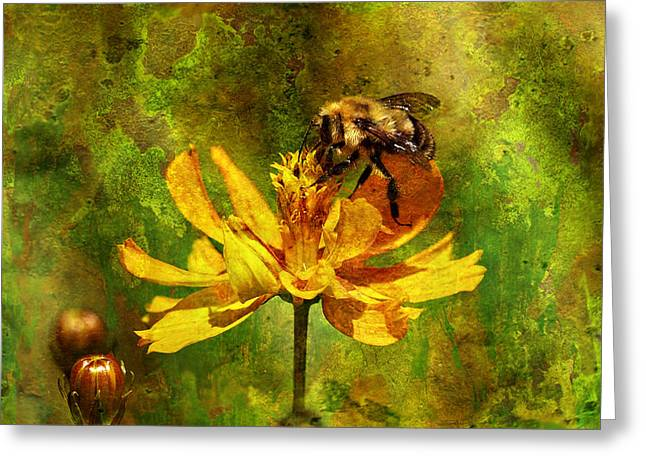 Busy Busy Honey Bee Greeting Card