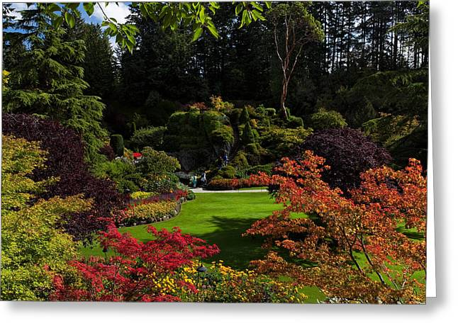 Butchart Gardens - Sunken Garden Greeting Card by Matt Dobson