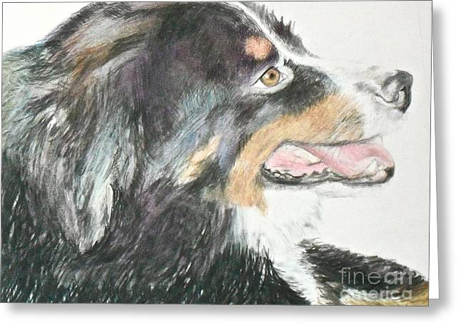 Greeting Card featuring the drawing Buttercup The Wonderdog by Beth Saffer