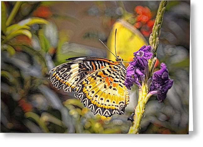 Butterfly 3 Greeting Card by Nathan Firebaugh