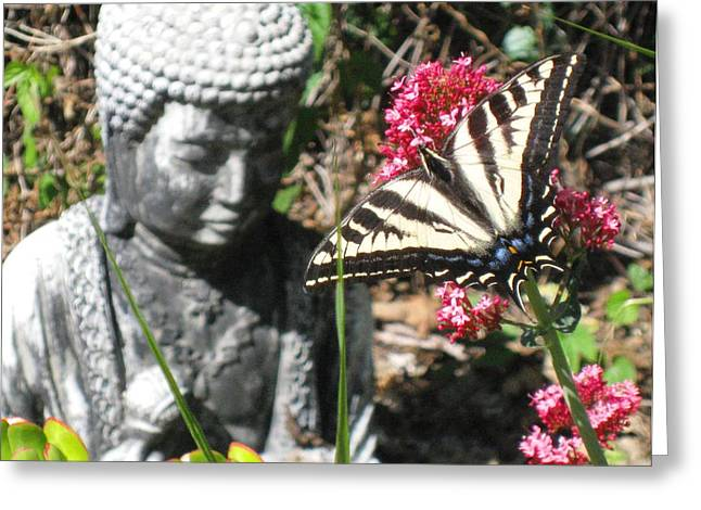 Greeting Card featuring the photograph Butterfly And Buddha by Sue Halstenberg