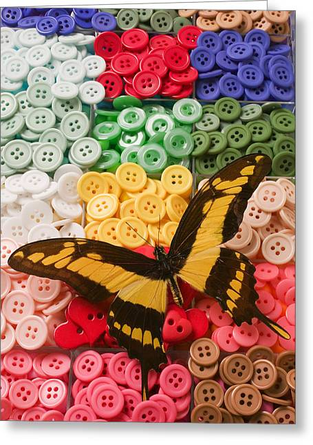 Butterfly And Buttons Greeting Card by Garry Gay