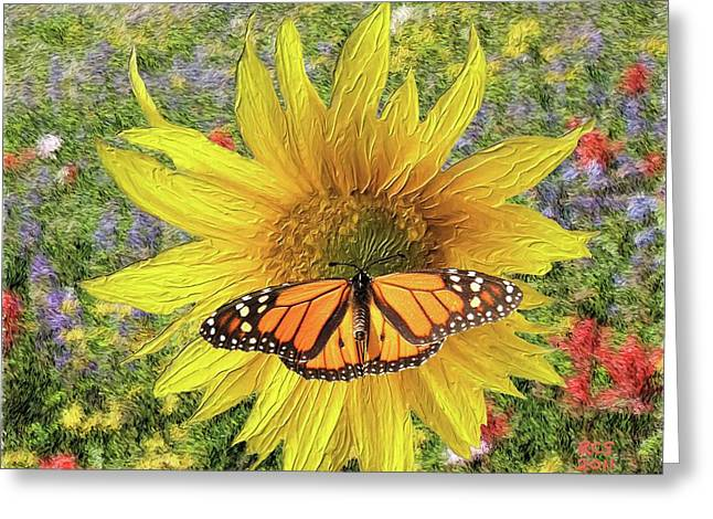 Butterfly And Sunflower Greeting Card by Richard Stevens