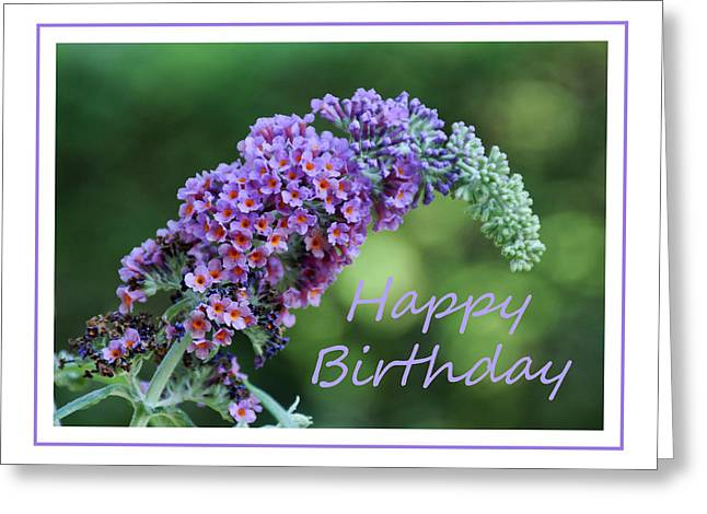Greeting Card featuring the photograph Butterfly Bush Flower by Geraldine Alexander