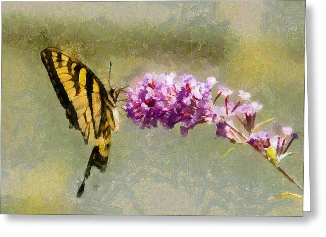 Butterfly Feast Greeting Card