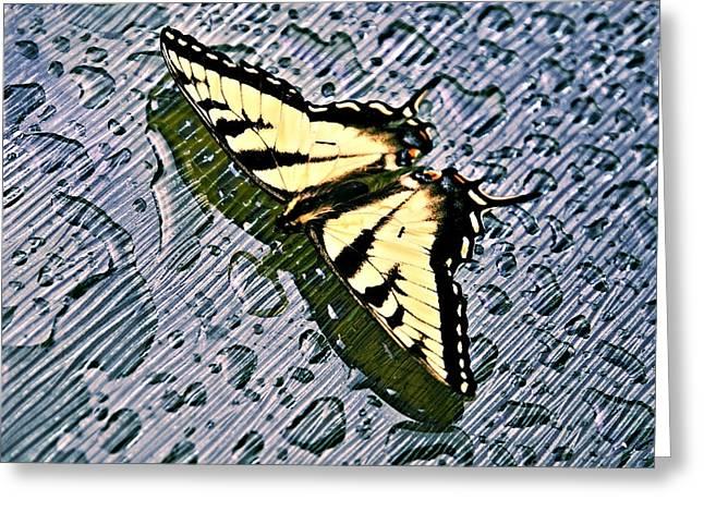 Butterfly In Rain Greeting Card by Susan Leggett