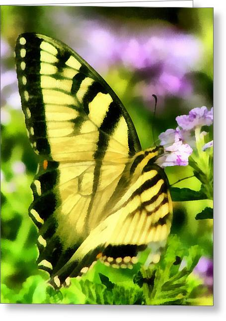 Butterfly Greeting Card by Lynne Jenkins