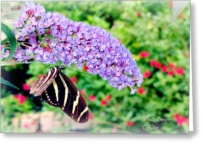 Butterfly Plant Greeting Card by Debbie Sikes