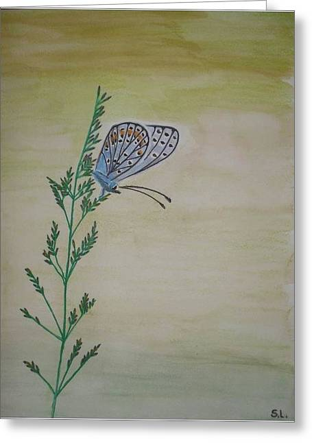 Butterfly Greeting Card by Silvia Louro