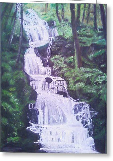 Buttermilk Falls Greeting Card by Samuel McMullen