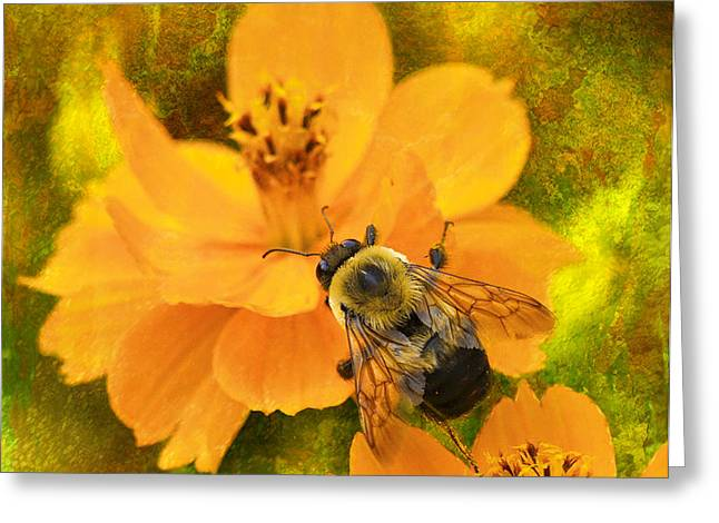 Buzzy The Honey Bee Greeting Card by J Larry Walker