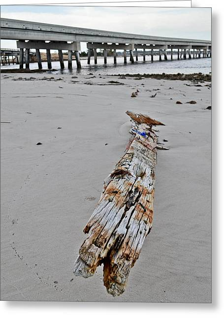 By The Sea Greeting Card by Brenda Becker