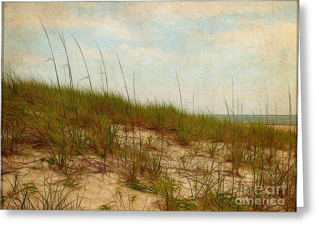 By The Sea Greeting Card by Judi Bagwell