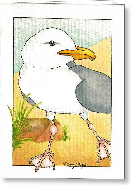 C. Gull Greeting Card