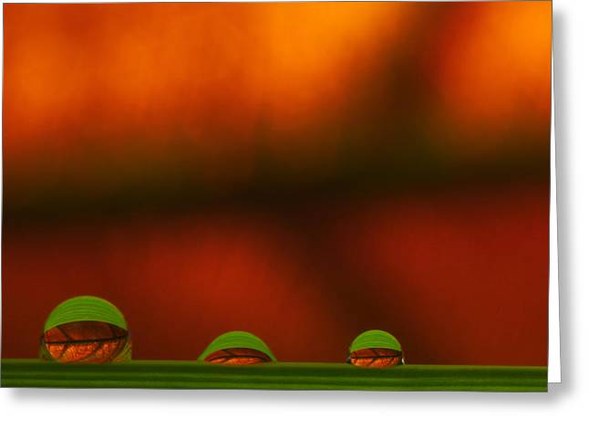 C Ribet Orbscape Three Perceptions Greeting Card by C Ribet