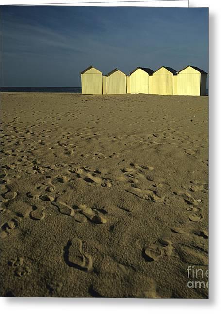 Cabins On A Beach In Normandy Greeting Card by Bernard Jaubert
