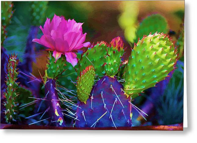 Cactus Flowers In Pink Greeting Card