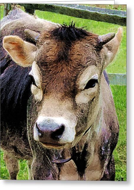 Calf Closeup Greeting Card