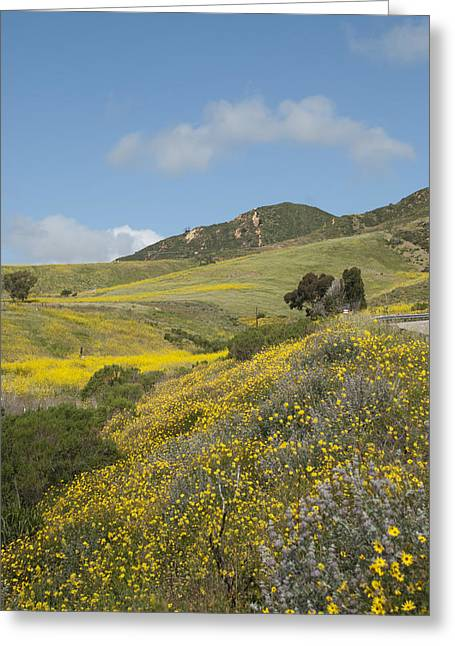 California Hillside View I Greeting Card by Kathleen Grace