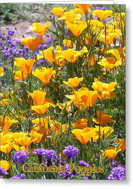 Greeting Card featuring the photograph California Poppies by Carla Parris