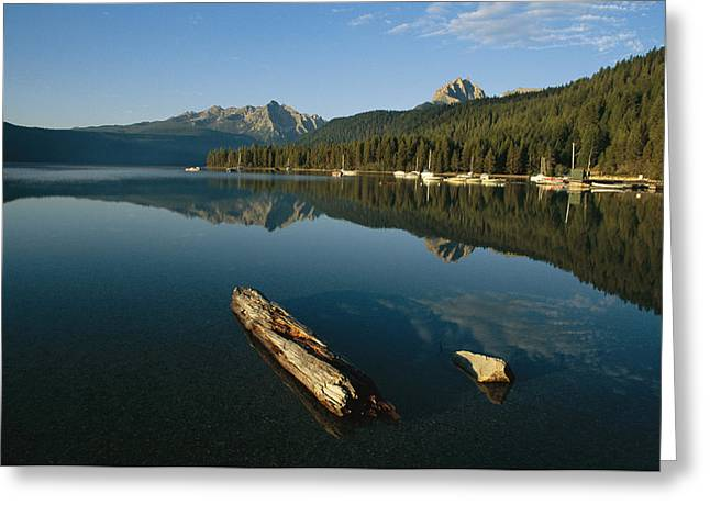 Calm Water With Submerged Log Greeting Card