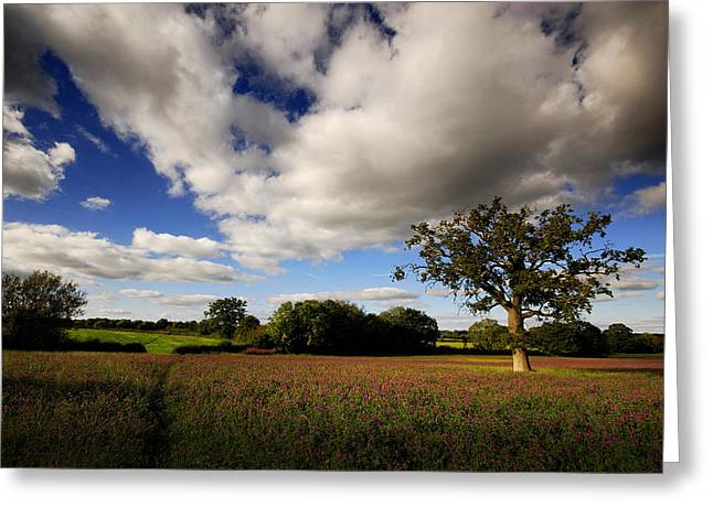 Greeting Card featuring the photograph Calmest Place On Earth by John Chivers