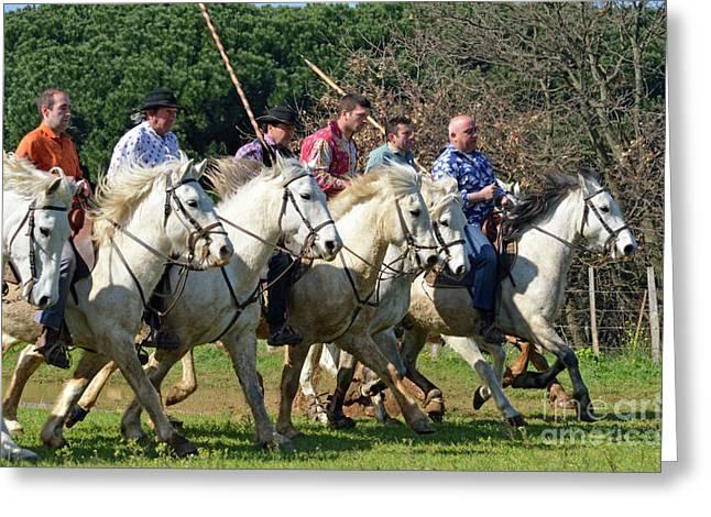 Camargue Cowboys Riding Horses Greeting Card by Sami Sarkis