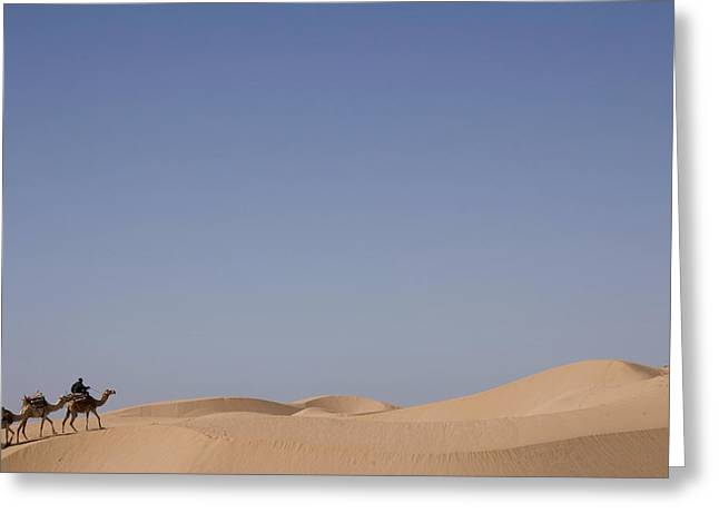 Camel Trek On Sand Dunes Greeting Card by Axiom Photographic
