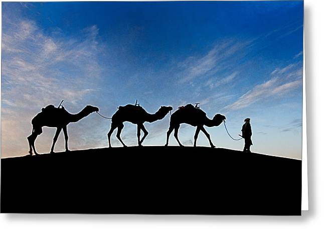 Greeting Card featuring the photograph Camels - 3 by Okan YILMAZ