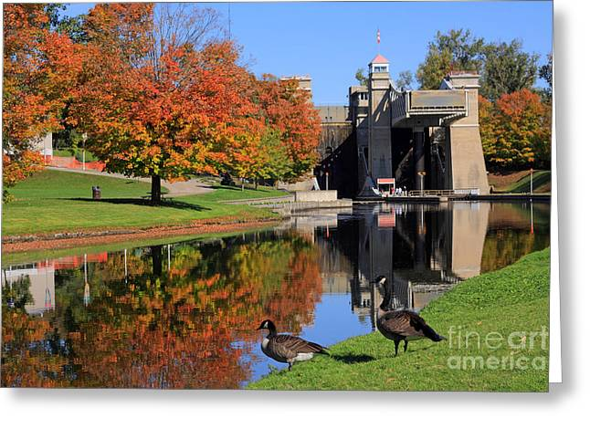 Canada Geese At Lift Lock Greeting Card by Charline Xia