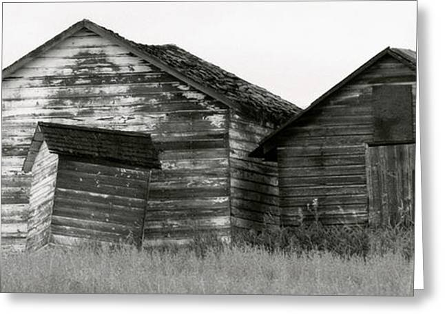 Canadian Barns Greeting Card by Jerry Fornarotto