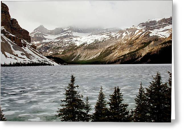 Canadian Lake 1899 Greeting Card by Larry Roberson