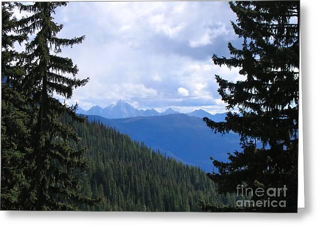Canadian Rockies Greeting Card by Kim Frank