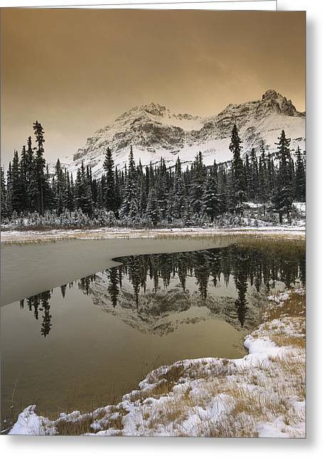 Canadian Rocky Mountains Dusted In Snow Greeting Card by Tim Fitzharris